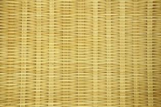 Pourquoi choisir le brise vue bambou ?