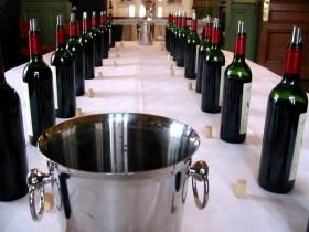 La Médoc : une région naturelle pour le vin